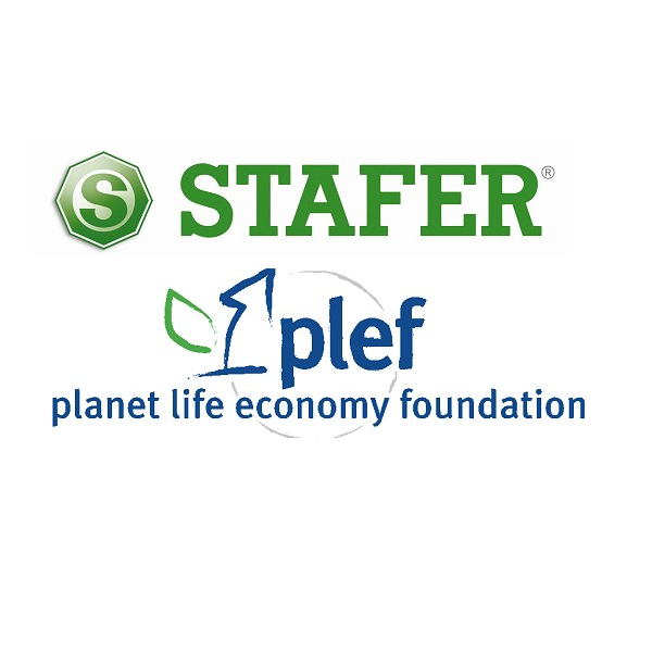 Logo Stafer e Plef